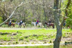 Trail Ride/Pony Ride - RIVER RANCHTEXAS HORSE PARK