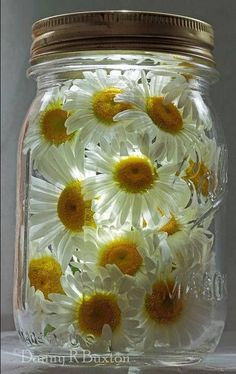 """Thanks to this photo from Danny Buxton, I figured out the cutest way to make cheap lights to put on our picnic table. Just take a Mason Jar, put fake (or real) flowers in the jar, and glue a Dollar Store """"tap light' inside the lid. Tap the light on, screw the lid on, and Voila! Instant lighting. Ours lasted about 7 hours... ~~ Houston Foodlovers Book Club"""