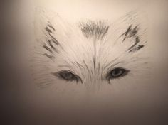 Yeux Tattoos, Eyes, Drawings, Animaux, Irezumi, Tattoo, Tattoo Illustration, A Tattoo, Tatto
