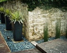 Landscape & Garden, A Rock Wall Tall Dark Planters On Mex Pebble With Up Light Spotlights And River Rock Landscaping Design So Pretty Landscaping Ideas Garden With River Rock Cost: Cool Garden with River Rock Plans to Beautify Your Landscape Landscaping Austin, River Rock Landscaping, Landscaping With Rocks, Modern Landscaping, Backyard Landscaping, Landscaping Ideas, Landscaping Company, Desert Landscape Backyard, Landscape Plans