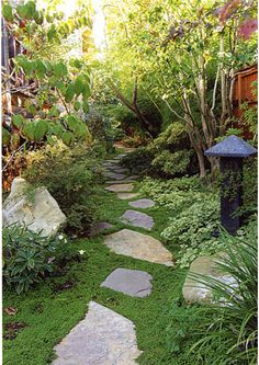 """Pathway, Ground Cover. """"The stone pathway twists a bit as it follows the fence line. Surrounded by a low ground cover that resembles moss, an often-used ground cover itself, the path disappears at the end of the yard. You may know, intellectually, that it just goes to the fence, but it appears to continue to a distant destination. """"      Boulders and mixed plantings line the path in a causal and irregular mix that creates a sense of balance while still providing movement through the space."""