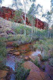 Perth Based Bushwalking Blog, with a focus on Regional Western Australia. Includes Multi-day Hikes like the Bibbulmun Track as well as day walks.
