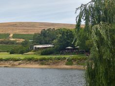Stunning Setting at Jordan Wine Estate Jordans, Country Roads, River, Outdoor, Outdoors, Outdoor Games, The Great Outdoors, Rivers