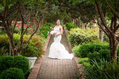 Bridal portraits at Clark Gardens. Clark Gardens, Dream Photography, Bridal Portraits, Photo Credit, Channel, Dreams, Wedding Dresses, Fashion, Bride Dresses