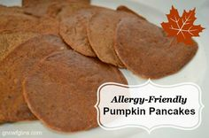 I've been on the hunt for gluten-free pumpkin recipes. These pancakes are one of my happy discoveries. They have the signature fall flavor of pumpkins, cinnamon, clove, and nutmeg and are well suited for breakfast or even an afternoon snack. You can even roll them up 'crepe-style' for more variety. All of this and allergy-free too!