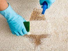 9 Exquisite Tips: Dry Carpet Cleaning Steam Cleaners deep carpet cleaning tips.Carpet Cleaning Quotes Baking Soda carpet cleaning tips sprays.Carpet Cleaning Rental How To Remove. Cleaning Carpet Stains, Carpet Cleaning Machines, Beige Carpet, Diy Carpet, Carpet Ideas, Hall Carpet, Modern Carpet, Cheap Carpet, Vomit Cleaner