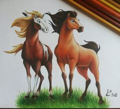 Cute Disney Drawings, Art Drawings For Kids, Horse Drawings, Colorful Drawings, Cute Drawings, Animal Drawings, Spirit Horse Movie, Spirit The Horse, Spirit And Rain