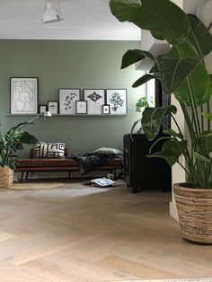 4 tips to successfully decorate your living room LOVE zo blij met mijn nieuwe kleur op de muur van love love love it ! Living Room Green, Home Living Room, Living Room Designs, Living Room Ideas, Living Room Colors, Bedroom Colors, Light Green Walls, Room Inspiration, Bedroom Decor