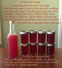 Prickly Pear Prickly Pear Jelly, Prickly Pear Recipes, Prickly Pear Margarita, Prickly Pear Syrup Recipe, Jelly Recipes, Jam Recipes, Canning Recipes, Fruit Recipes, Recipies