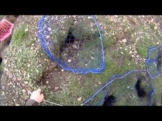 Bolting rabbits with ferrets, 27 in 4 hours. - YouTube
