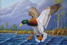 duck paintings | amazing mallard duck painting (11)