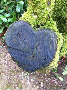 Nature at her best. Tree love heart.   | National Trust |