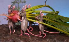 MousesHouses