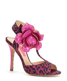 BJ Rose and leopard