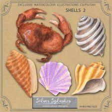 EXCLUSIVE Shells 2 Watercolours by Silver Splashes #CUdigitals cudigitals.com cu commercial digital scrap #digiscrap scrapbook graphics