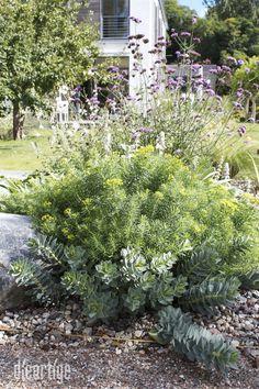 Gräserreigen - dieartige // DESIGN STUDIO // Raumplanung Interior Garden, Pergola Designs, Interior Design Studio, Bungalow, Garden Design, Outdoor Decor, Plants, Garden Design Ideas, Lawn