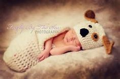 Dog Baby Cocoon - Bing Images
