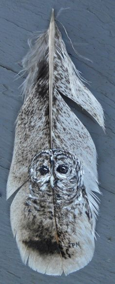 Pat's Pet Portraits and Wildlife Art: New owl feather...
