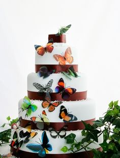 50 Natural Butterflies great for Cake by clearcutcrafts2007, $45.00