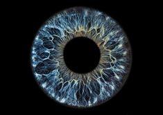 Iris-Foto Galerie - garantiert einzigartige Bilder