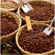 """Diferencia entre """"tostar"""" y """"torrefactar"""" el café"""