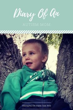 Diary Of An Autism Mom entry #2 -Autism Diagnosis