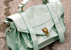 I really need to find a cute reasonably priced satchel!