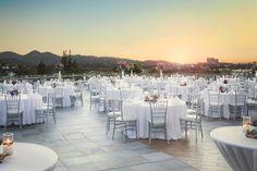 beautiful reception dinner