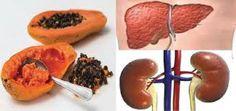 tirar toxinas dos fígado e rins Como já havíamos dito em outras matérias, a maioria de nós não se preocupa com as toxinas no fígado e nos rins.  Parece que o importante mesmo são os cuidados com o cabelo, unhas e dentes.