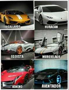 The Veneno was, is, and always will be my dream car. Which Lamborghini do you prefer?