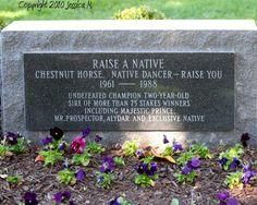 Raise A Native