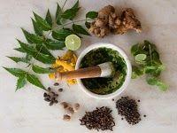 Magickal Correspondences: Herbs, Spices, Plants & Foods