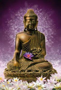 significado do Buda - Pesquisa Google