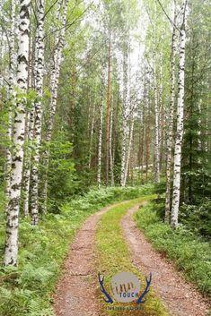 Der Weg zum Mökki  #finntouch #finnlandhautnah #finnland #finland #visitfinland #suomi #visitmikkeli #mökki