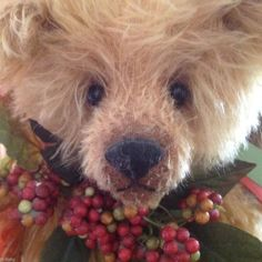 "Bainbridge Bears ""Bramble"" by Donna Hinkleman Mohair Artist Bear One of a Kind"