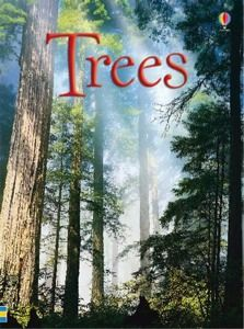 Trees (Usborne Beginners): by Usborne / Educational Development Corporation x hard cover booklet 32 full colored pages Ages 6 and up more English Time, Lisa, Picture Tree, Lexile, Reading Practice, Arbour Day, Animal Books, View Video, Science Books