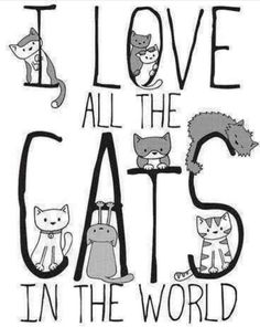 I love all the cats in the world | illustration with typography in greyscale #CatLady