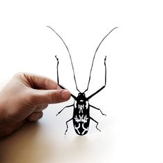 harlequin beetle hand-cut papercut.  Approximately life-size!