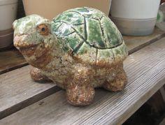 Turtle / Testudines / 亀