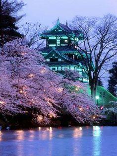 #Giappone: non solo la modernità di Tokyo, ma anche le bellezze che ti riportano in un'altra epoca, ti fanno sognare e ti regalano emozioni uniche!