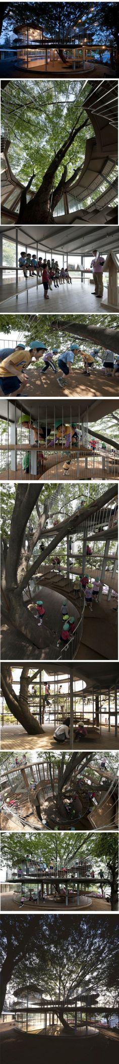 An inventive and ingenious kindergarten design centred around a tree!!!