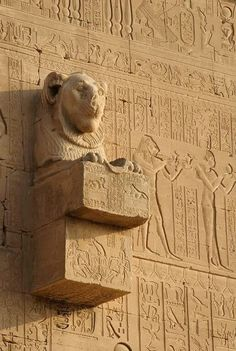 Ancient Egypt: 'Lion gargoyle at Dendera.' A lion-headed gargoyle adorns the southern exterior wall of the Hathor Temple at Dendera, all. Ancient Egyptian Art, Ancient Aliens, Ancient History, Art History, Fu Dog, Egypt Art, Luxor, Ancient Architecture, Ancient Civilizations