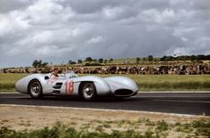 Fangio (Mercedes-Benz)  1954 - French GP