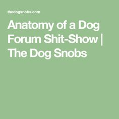 Anatomy of a Dog Forum Shit-Show | The  Dog Snobs