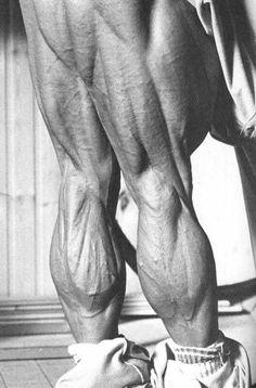 Tom Platz's legs.