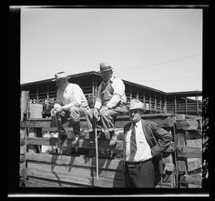 Cattle merchants in stockyards. Kansas City, Kansas. 1936 May. Library of Congress.