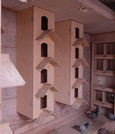 Harm Vredeveld & Robert Leemhuis, Coevorden - Winnaar Categorie 3 Eendaagse Fondspiegel Jong Pigeon Nest, Pigeon Cage, Pet Pigeon, Pigeon Bird, Chicken Coop Kit, Chicken Cages, Building A Chicken Coop, Pigeon Loft Design, Racing Pigeon Lofts