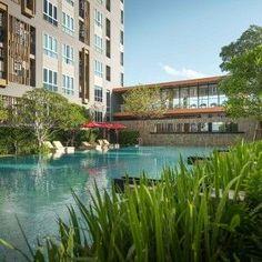 Swimming pool at The Key Sathorn Ratchapreuk, Landscape design by XSiTE Design Studio Bangkok © XSite