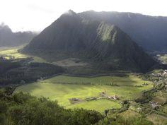 Reunion Island La Plaine des Palmistes