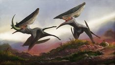 Thalassodromeus sethi: supercrested pterosaur. By Mark Witton. Check out the Mark Witton.com Blog for an article on the appearance and lifestyle of Thalassodromeus.